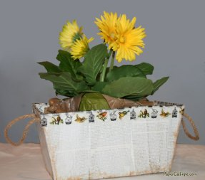 Spring planter box hack from Target Dollar Spot by Paper Calliope