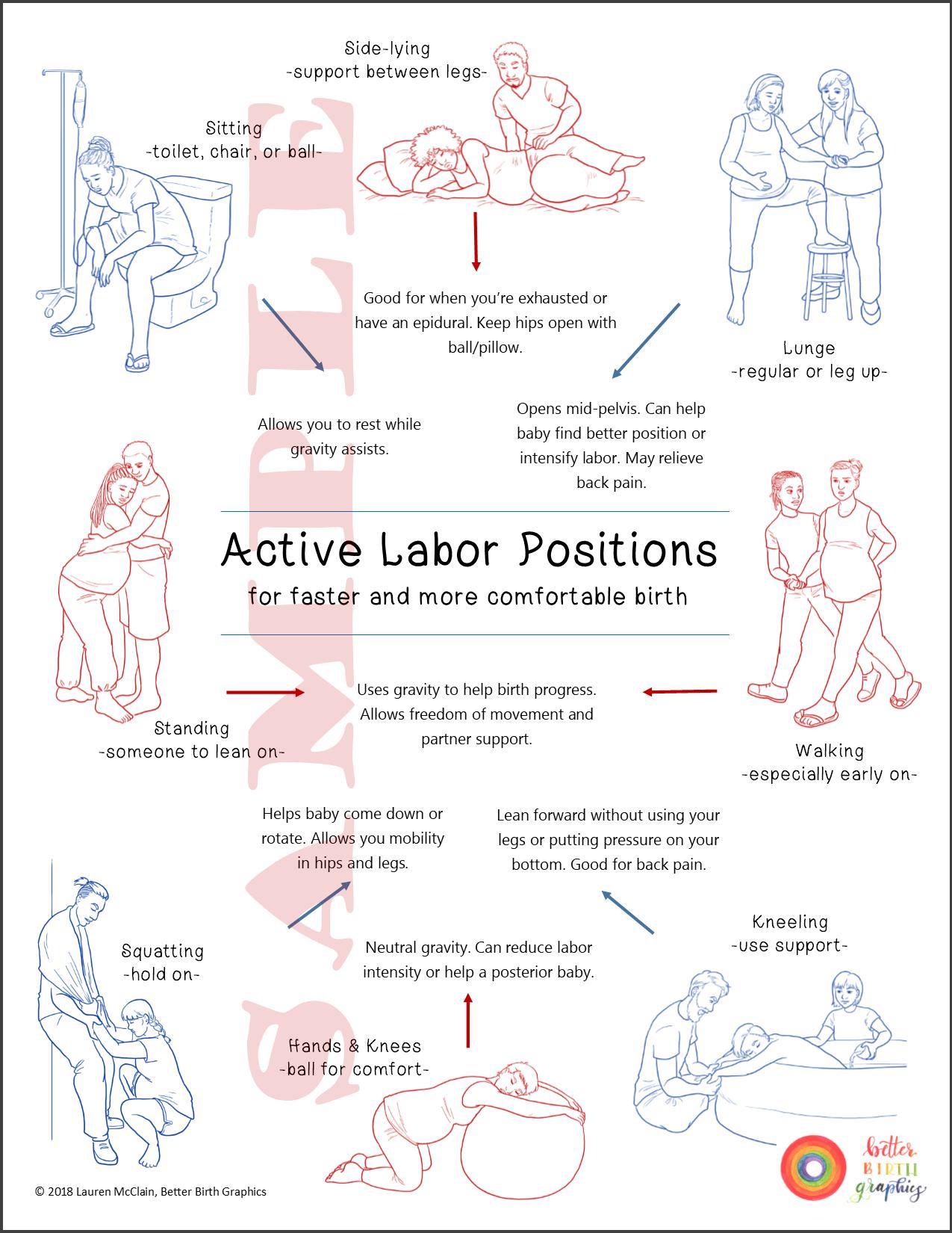 Labor Positions Handout