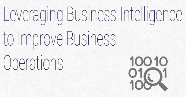Leveraging Business Intelligence to Improve Business