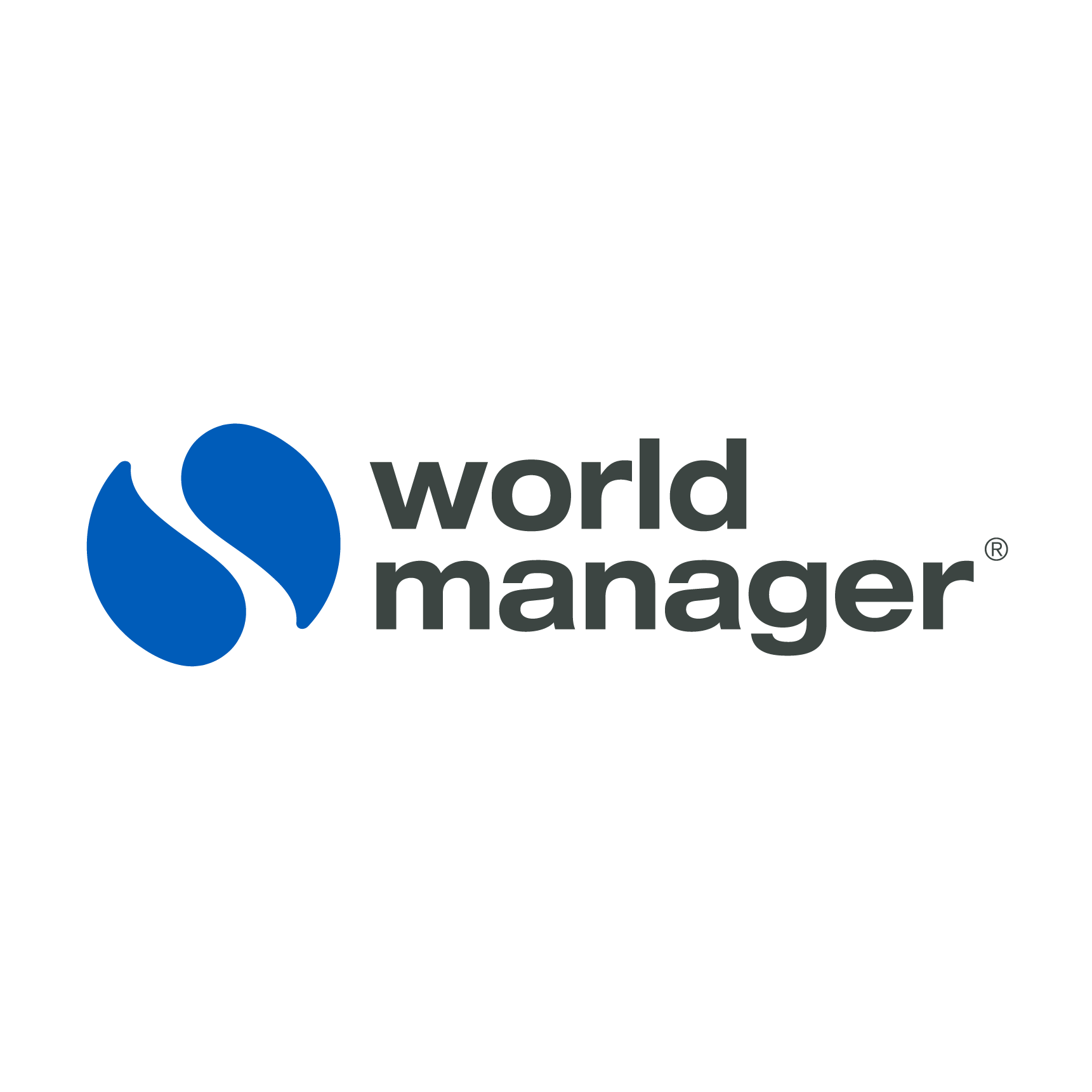 World Manager Review