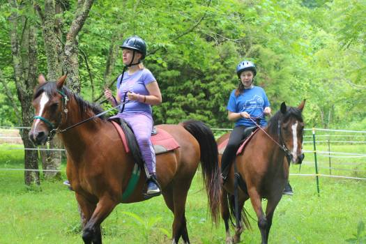 alders gate camp 2 horseback riding