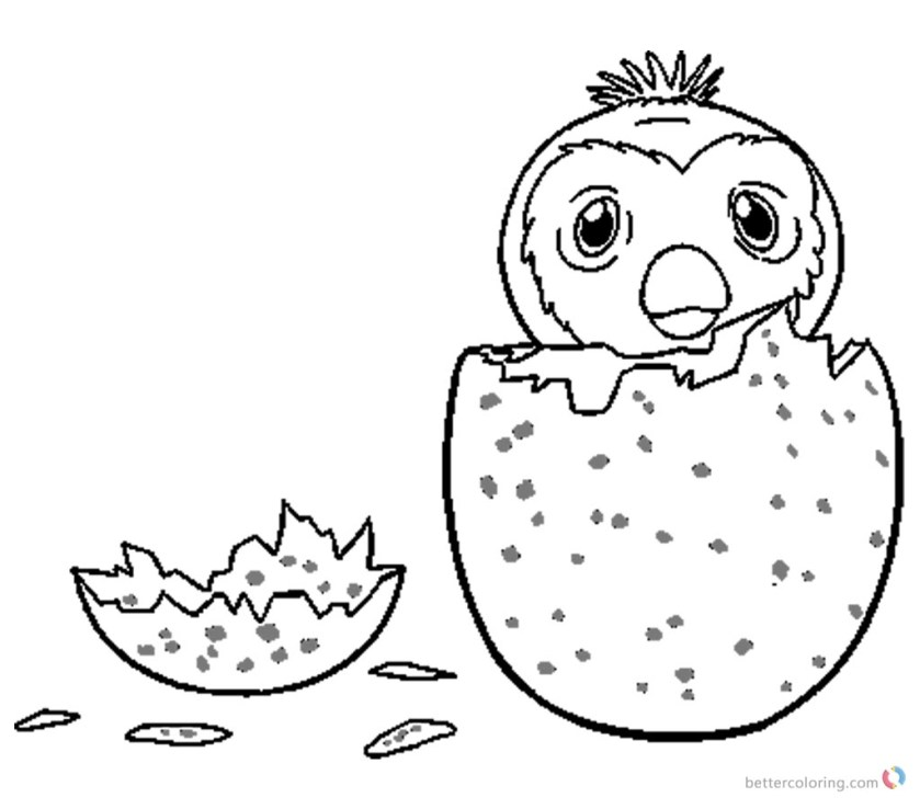 baby hatchimal coloring pages  division of global affairs