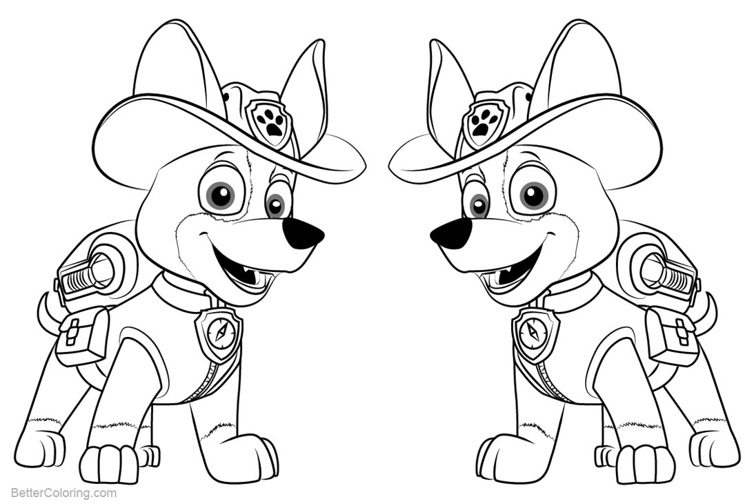 Amazing Paw Patrol Mighty Pups Drawing And Coloring For ...