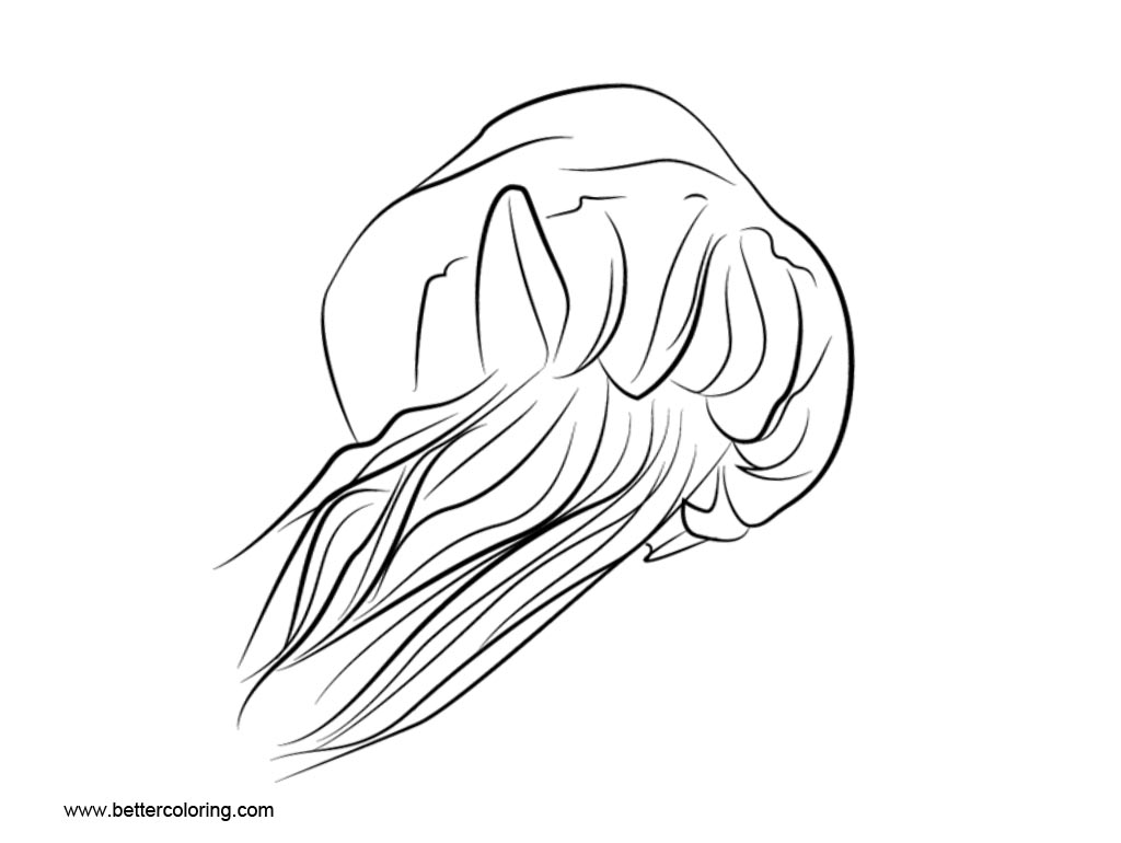 hight resolution of free jellyfish coloring pages clipart printable for kids and adults