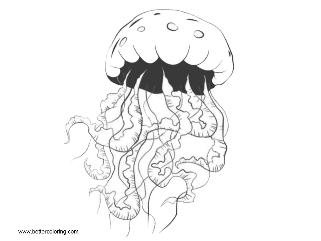 Jellyfish Coloring Pages Inkblot