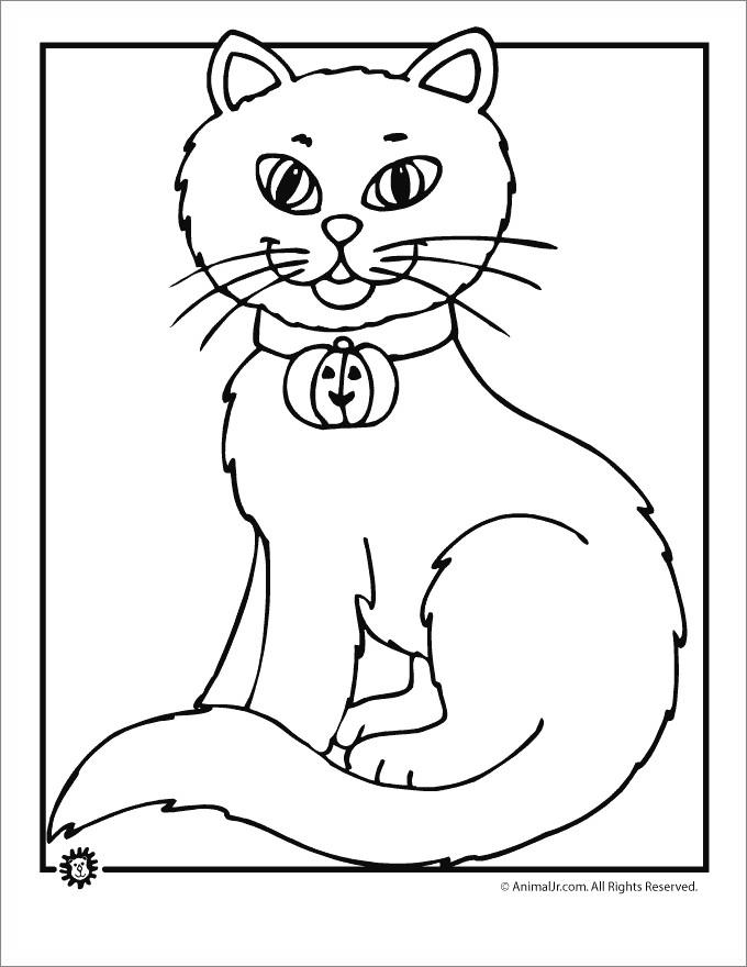 black cat  bell coloring pages  free printable