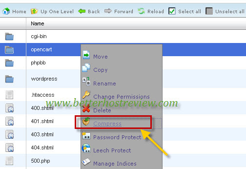 Migrate OpenCart to new server – Better Host Review