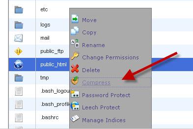 backup websites via file manager in cpanel