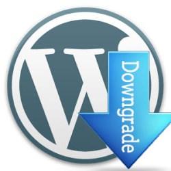 Downgrade WordPress to Earlier Version – Better Host Review