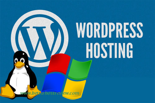 Effective WordPress Hosting