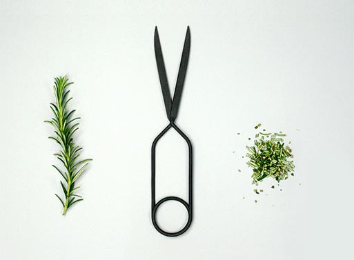Spring Scissors Nomess Lex Pott