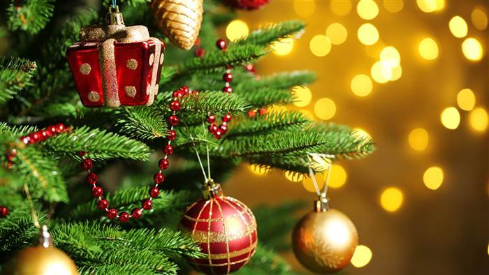 Your Christmas Tree Could Be Dangerous | Bahamas Real Estate