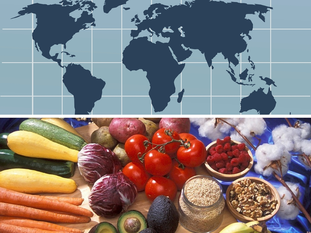 List Of Gmo Foods Amp Crops Grown In Different Countries