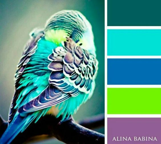 Color Palettes pinned to BettesMakes