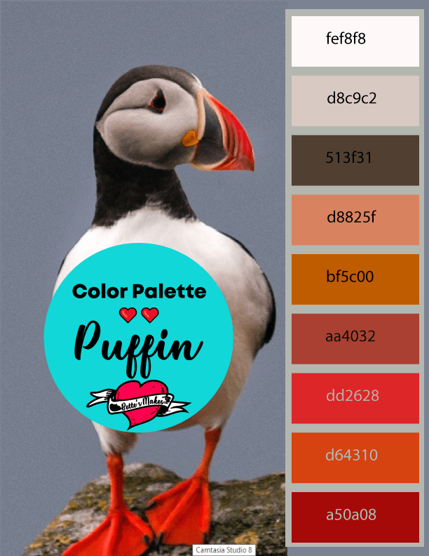 Weekly color palette - the Puffin - such an incredible bird - For the love of birds - you can use this color palette from nature for all your designs! #colorpalette #bird