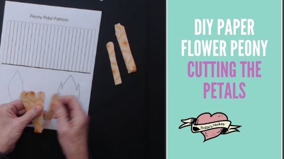 DIY Paper Flower Peony - Cutting the Petals - BettesMakes