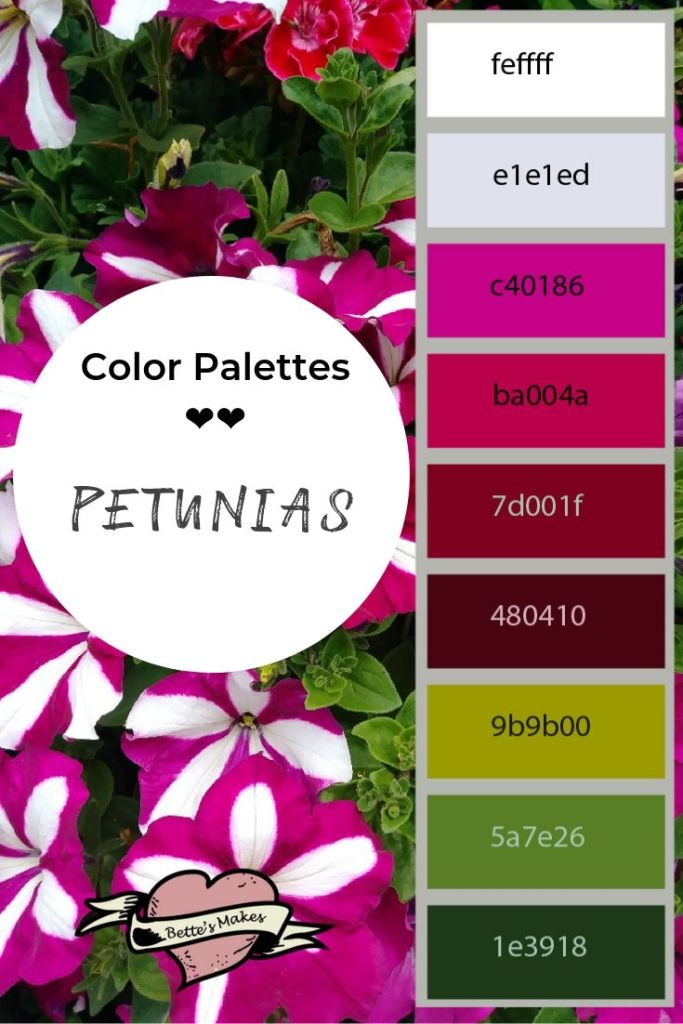 color palettes  petunias - BettesMakes.com