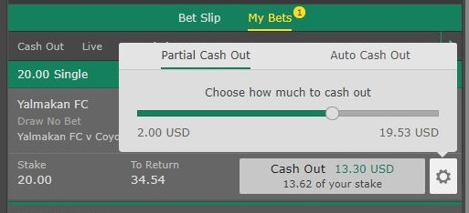 partial cash out amount