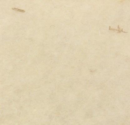 Vlies Schafwolle
