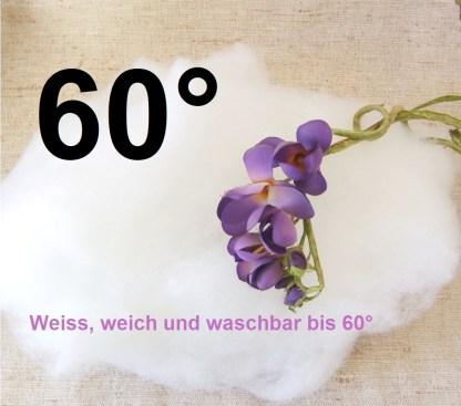 watte 60°