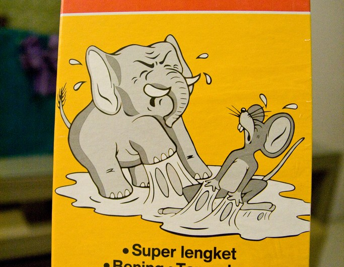 Rat and Elephant trap