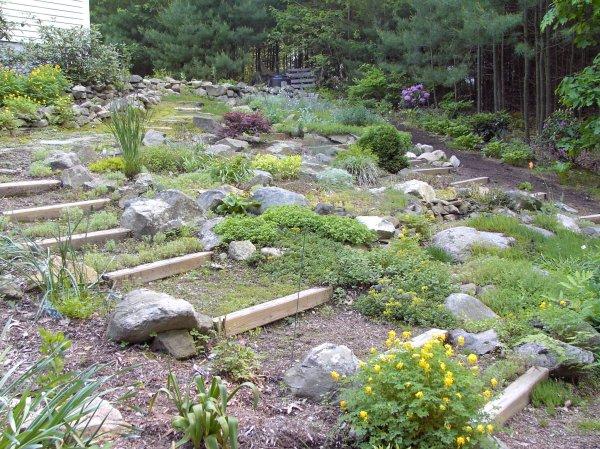 garden 1999-2015 betty