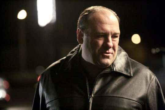 With many hits yet to make when he died at age 51, Gandolfini's   anti-hero ushered in the golden age of American TV drama.