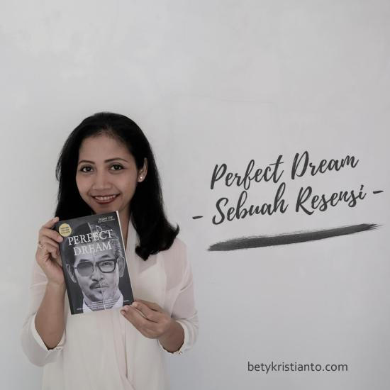 resensi novel perfect dream