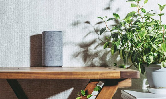 Smart Home Hubs and Controllers