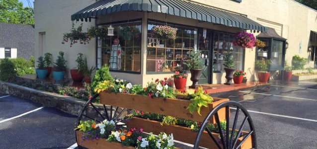 Waynesville: $15 Gift Certificate from Main Street Mercantile