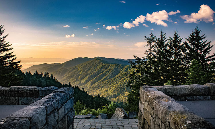 Nonprofit Spotlight: Friends of Great Smoky Mountains National Park