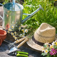 18 Local Garden Centers that Make Your Landscaping Easy to Manage
