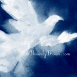 White Dove Painting