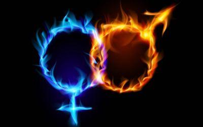 Seksuel polaritet skaber fysisk tiltrækning