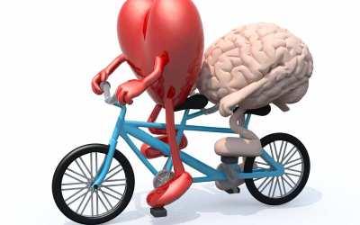 Dit Intelligente Hjerte