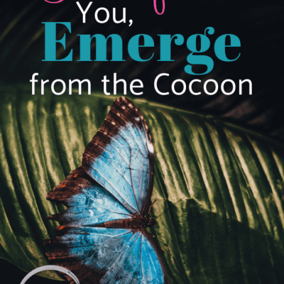 When Life Transforms You, Emerge from the Cocoon