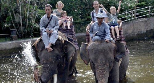 エレファントライド、ウブドエレファント、バリエレファント、象乗り体験ツアー