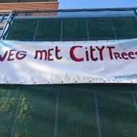 TNO: CityTrees werken echt niet