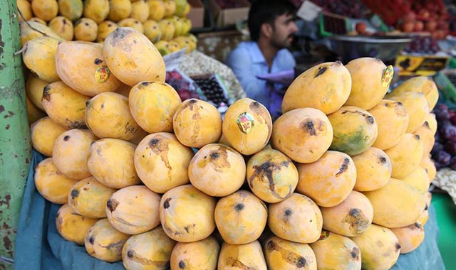 "Photo of Mango exports from Pakistan ""extremely"" affected by coronavirus restrictions"