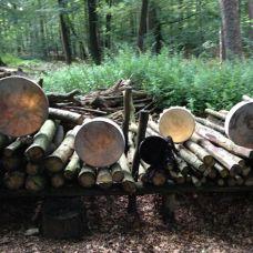 sjamaan drumbouw
