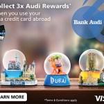 Visa 300x250px Web