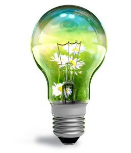 Lightbulb containing grass and flowers