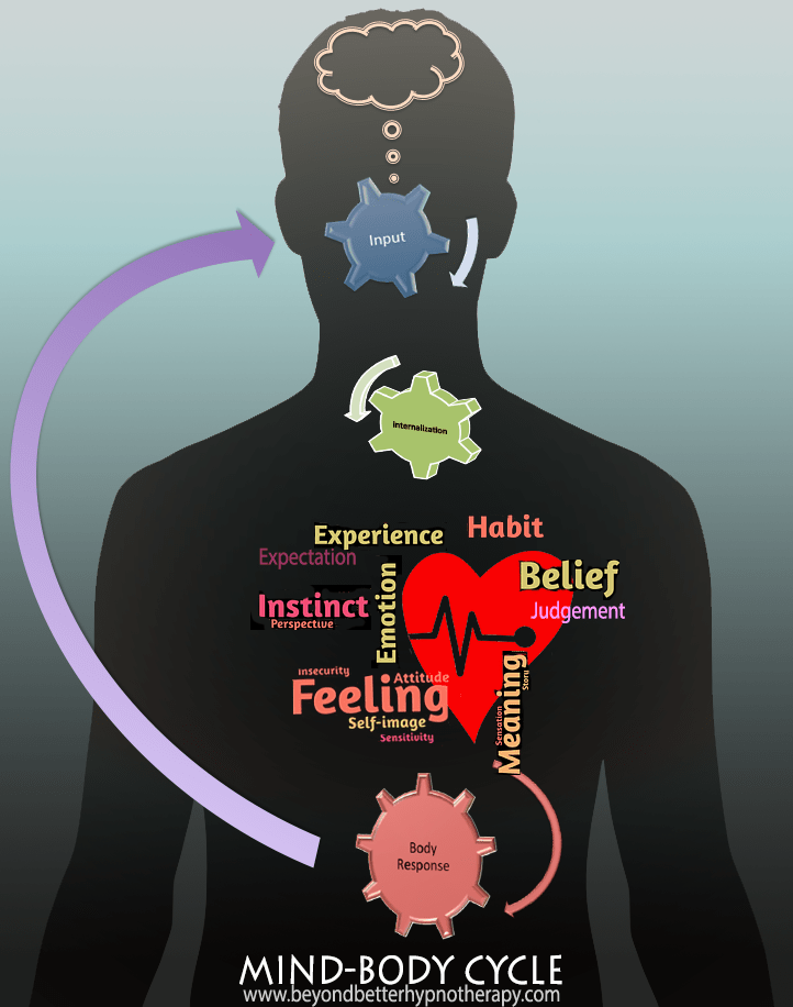 Mind-Body Cycle