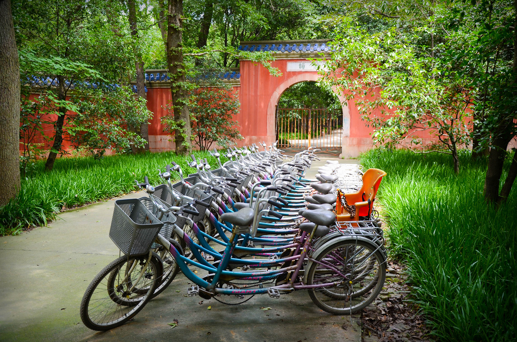 Bikes in Nanjing