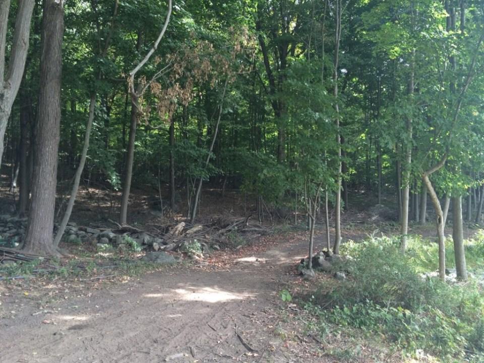 Crystal Park Trail