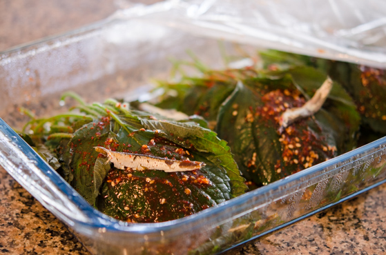Steamed Perilla Leaves