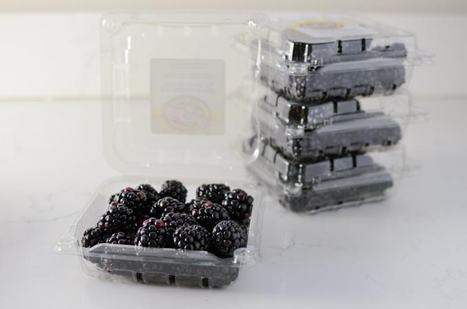 Easy Blackberry Cobber