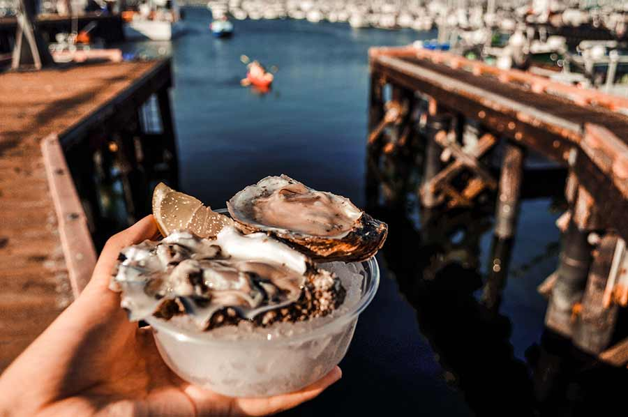 oysters free-things-to-do-in-santa-barbara-california-(4)