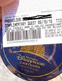 Disney pass