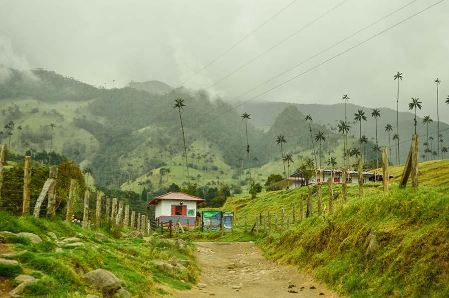 cocora-valley-salento-colombia-(1)